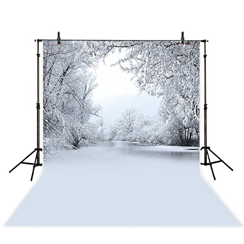 Allenjoy 5x7ft Polyester Tranquil Silver Thaw above Ice Lake Backdrop Scenery Frozen Background for Photography or (7' Silver Frame)