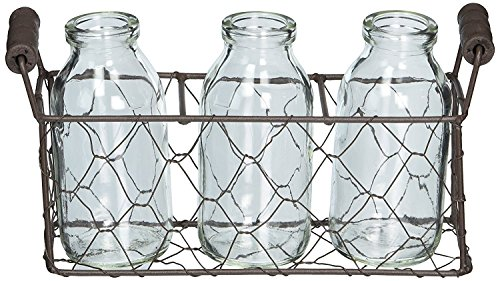 Chicken Wire Rectangle Decorative Metal Basket with Three Glass (Easter Basket Glass)