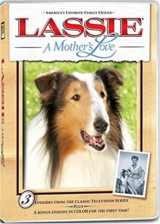 Amazon com: Lassie: A Mother's Love: Various: Movies & TV