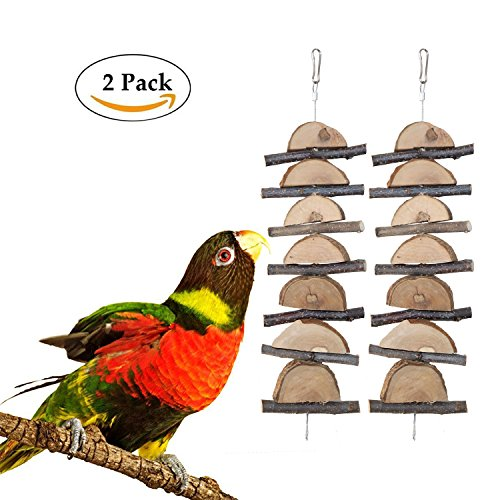Bwogue Small Animal and Bird Chew Sticks,Natural Apple Branch Chew Toys Teeth Shred Clean Tool (Two piece) - Apple Branch