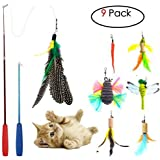 Cat Toys Interactive,9 Packs Retractable Cat Toy Wand, Cat Feather Toy, Assorted Refills Teaser Exerciser Wand Toy Set,Fish Bird Butterfly Dragonfly Worm