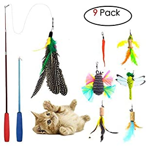 Cat Toys Interactive,9 Packs Retractable Cat Toy Wand, Cat Feather Toy, Assorted Refills Teaser Exerciser Wand Toy Set,Fish Bird Butterfly Dragonfly Worm 58
