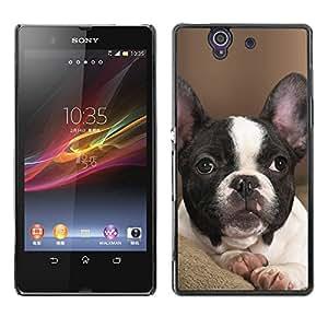 French Bulldog Boston Bull Terrier Pet - Metal de aluminio y de plástico duro Caja del teléfono - Negro - Sony Xperia Z L36H C6602 C6603 C6606 C6616