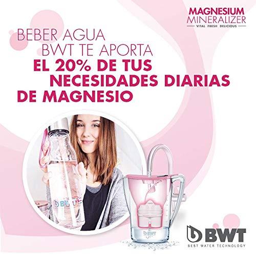 BWT Pack 9 filtros Jarra de Agua con magnesio Longlife mg2+, Blanco, 9 Meses: Amazon.es: Hogar
