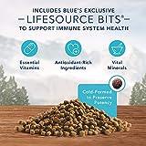 Blue Buffalo Wilderness Natural Mature High Protein