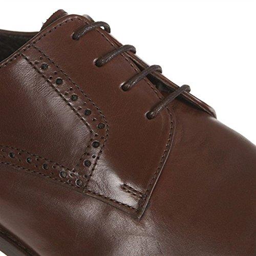 J.Bradford - Zapatos Hombre Derby GREG Marron