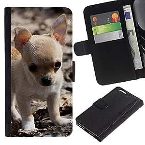 LASTONE PHONE CASE / Lujo Billetera de Cuero Caso del tirón Titular de la tarjeta Flip Carcasa Funda para Apple Iphone 6 PLUS 5.5 / Chihuahua Puppy Small Baby Pet Dog
