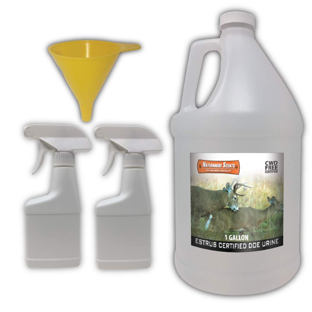 Nationwide Scents Doe Estrus Buck Attractant Whitetail Lure Hunting Scent Natural Urine | Make Deer Scrape (1 Gallon) by Nationwide Scents