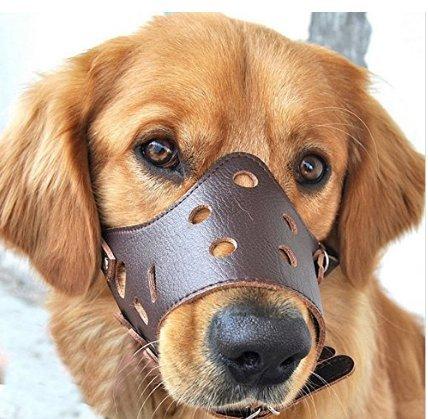 Bozal ajustable para perro, de piel, antimordiscos, para perro de tamaño