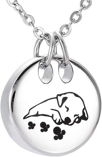 PET Cremation Ash Urn Charm Locket Dog Tag Titanium Steel chs5902