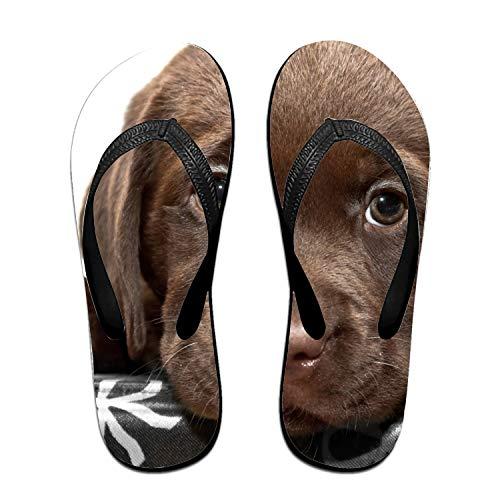 (Chesapeake Bay Retriever Unisex Flip Flops Sandal for Women Men Classical Comfortable Slipper)