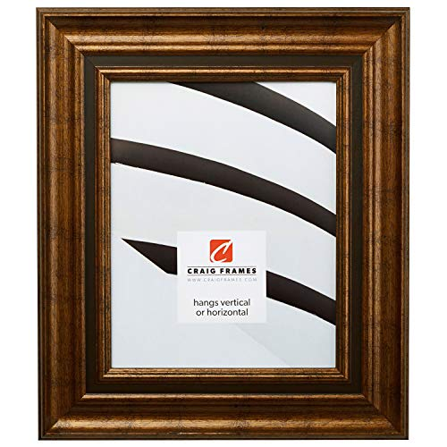 Craig Frames 81285100 24 by 36-Inch Picture Frame, Solid Wood, 2.5-Inch Wide, Aged Gold ()