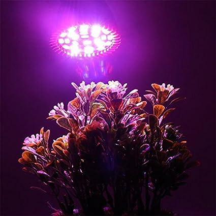 Tamlltide Full Spectrum E27 - Bombilla de luz LED para plantas de cultivo
