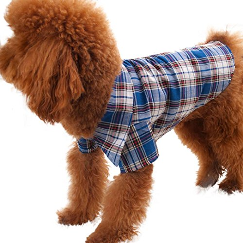 DDLBiz Small Plaids Clothes Apparel