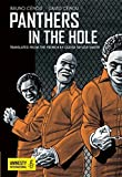 img - for Panthers in the Hole book / textbook / text book