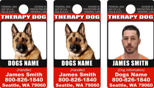 THERAPY DOG ID Badge Bundle – 2 Dog's Custom ID Badges and 1 Handlers ID Badge – Vertical Design#1 – These Are Small Plastic Cards With Round Hole For A Split Ring – Each Card Is 1 1/4″ By 2 1/4″ – Made For Small and Medium Dogs – Made By Dean and Tyler, My Pet Supplies