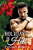 Holidays in Hell (The Demons in Darkness Series Book 1)