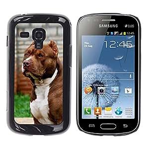 TopCaseStore / la caja del caucho duro de la cubierta de protección de la piel - Dog Boston Terrier Canine - Samsung Galaxy S Duos S7562