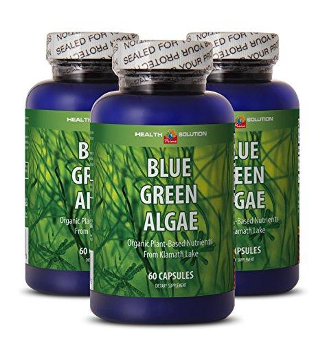 Klamath blue green algae organic - BLUE GREEN ALGAE - enhance weight loss (3 bottles) (Best Blue Green Algae)