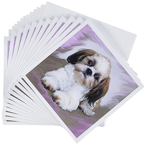(3dRose Shih Tzu puppy - Greeting Cards, 6 x 6 inches, set of 12 (gc_4807_2))