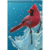 Large Size Flag, Snow Cardinal, 28 X 40 Inches Review