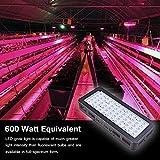 Golspark Indoor LED Grow Light, 600 Watt Full