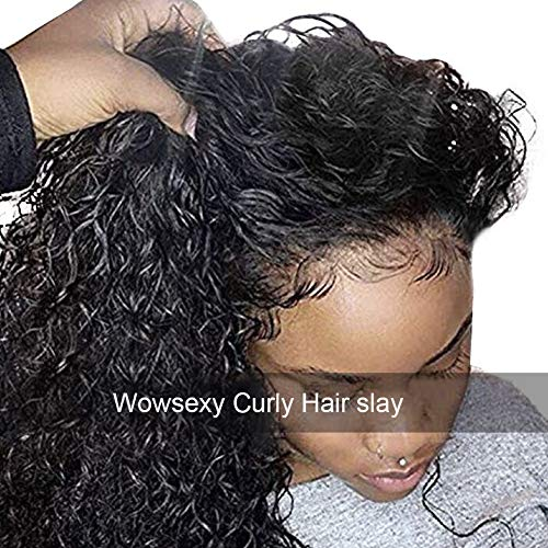 Wowsexy Hair Brazilian Virgin Hair Remy Wigs Curly Lace Front Wigs Human Hair with Baby Hair for Black Women African Americans Wigs Pre Plucked Hairline - Lace Front African American Wigs