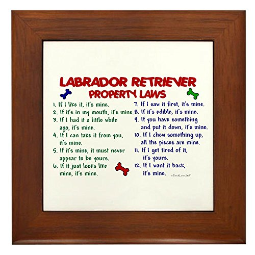 (CafePress - Labrador Retriever Property Laws 2 Framed Tile - Framed Tile, Decorative Tile Wall Hanging)