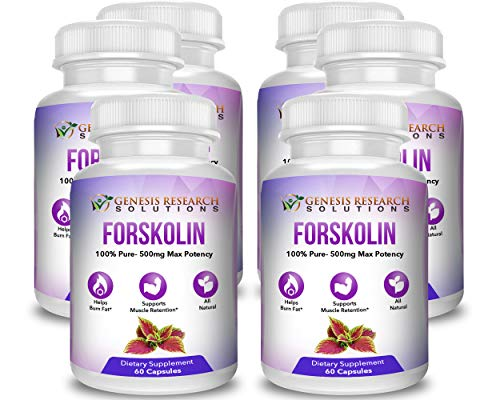 Pure Forskolin Dietary Supplement, Appetite Suppressant for Weight Loss & Muscle Retention. Plus Metabolism & Energy Booster – 100% Natural Supplement Extract 6 Pack