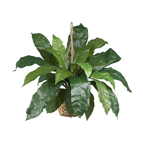 Nearly Natural Large Birds Nest Fern Hanging Basket