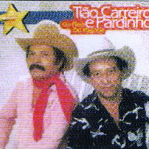 Estrela De Ouro: Reis Do Pagode [CD]