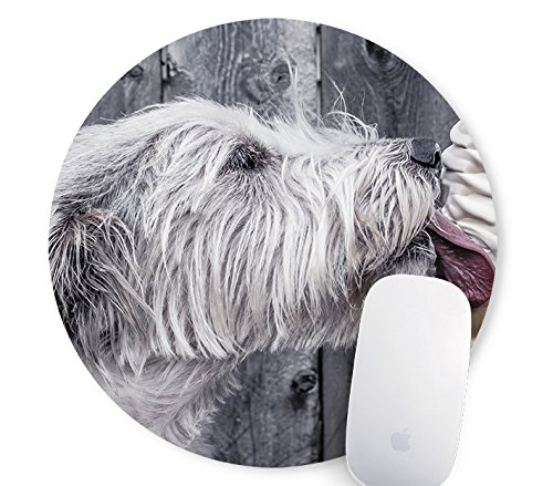 1d129d263f89f Galleon - Dog Eating Ice Cream Round Mouse Pad Diameter 8 Inch Mouse Mat