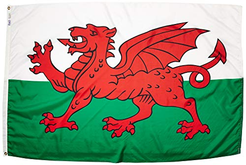 Cheap Annin Flagmakers Model 221115 Wales Flag Nylon SolarGuard NYL-Glo, 4×6 ft, 100% Made in USA to Official United Nations Design Specifications
