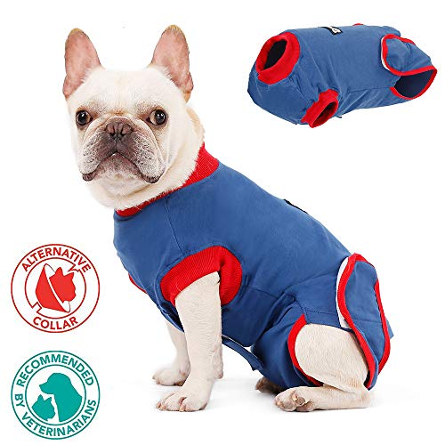 FOREYY Dog Professional Recovery Suit Abdominal Wound Protector Puppy Medical Surgical Clothes Post-Operative Vest Pet After Surgery Wear E-Collar & Cone Alternative (XL) (Body Suit For Dogs)