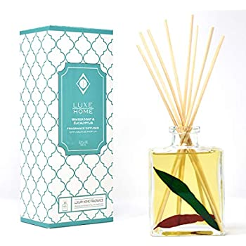 Luxe Home Winter Mint & Eucalyptus Reed Diffuser Oil | Herbal Essential Oil Blend | Elegant Home Decor | Decorative Red & Green Eucalyptus Leaves Inside The Bottle!
