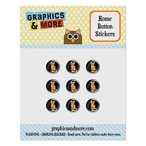 (Set of 9 Puffy Bubble Home Button Stickers Fit Apple iPod Touch, iPad Air Mini, iPhone 4/4s 5/5c/5s 6/6s Plus - Cat Kitty Kitten - Orange Tabby)