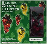 Darice LT80-1 35 Lights with 1/2-Inch Grape Cluster Light Set 6ft