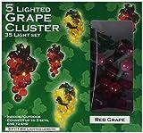 grape cluster lights - Darice LT80-1 35 Lights with 1/2-Inch Grape Cluster Light Set 6ft