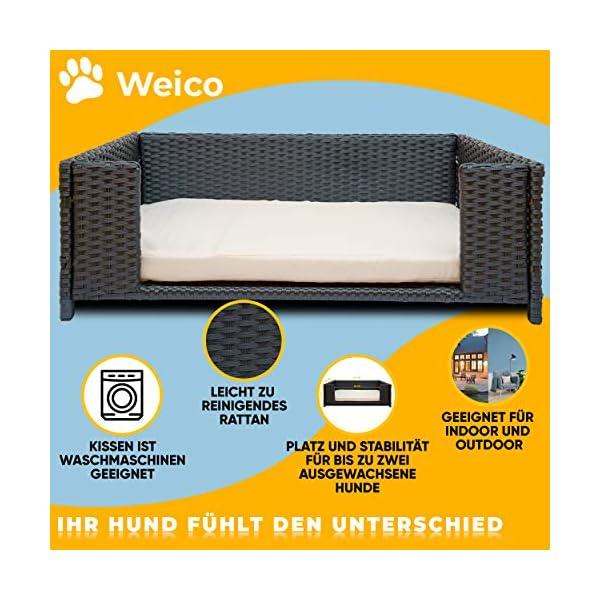 51QUyj5akmL Cherioll weico Hundebett in Rattan-Optik 90 x 60 x 30 cm - gemütliches Hundebett mit waschbarem Kissen - stabiles…