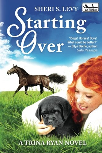 Starting Over: A Trina Ryan Novel (Volume 2)