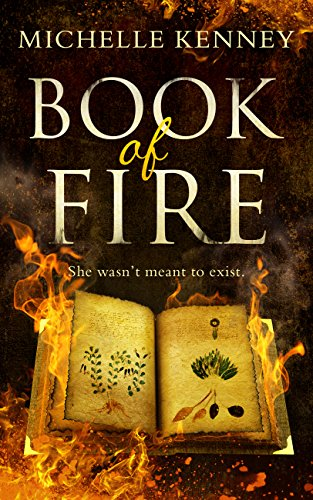 Book of Fire: a debut fantasy perfect for fans of The Hunger Games, Divergent and The Maze Runner 2010 Maze