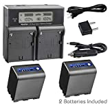Kastar LCD Dual Smart Fast Charger   2 x Battery for Sony NP-QM91D NP-FM50 NP-QM71 NP-FM70 NP-FM90 and CCD-TRV328 338 DCR-DVD300 301 DCR-HC14 DCR-PC105 330E DCR-TRV70 80 250 260 Camera