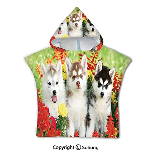 Dog Lover Decor Toddler Hooded Beach Bath Towel,Three Siberian Husky Puppy on Grass Flowers Grass Nature Outdoors Summertime Family Friend,1-7 Years Old Microfiber Bath Robe,for Beach Pool Shower