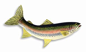 LX Hand Painted Rainbow Trout Wall Mount Decor Plaque Game Fish Replica 18""