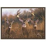 Custom Printed Rugs CR Wildlife Rug - Buck Stops Here Nylon 37''x52''