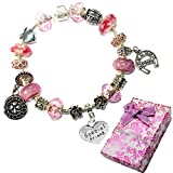 Charm Buddy Special Friend Pink Purple Crystal Good Luck Pandora Style Bracelet With Charms Gift Box