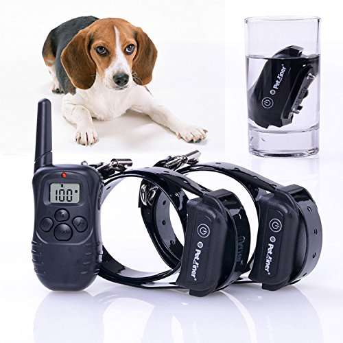 RioRand RR-PD265C Rechargeable and waterproof Dog Pet Remote Control Training with 2 receivers
