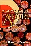 Aperture, Oladayo Sanusi, 1413740022
