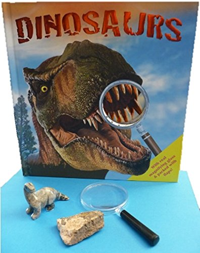 Cute handcarved stone dinosaur, Dinosaur Book, Real Dinosaur Bone Fossil and magnifying glass - 2 inch piece of dinosaur bone fossil from Utah! Dinosaurs book has facts and - Fossil Utah Store
