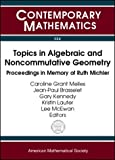 Topics in Algebraic and Noncommutative Geometry, Ruth I. Michler, 0821832093